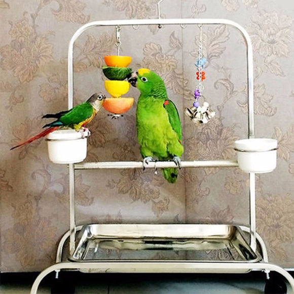 Birds Foraging Toys Parrot Stainless Steel Food Fruits Fork Feeder Lovebird Treating Bird Cage Accessories
