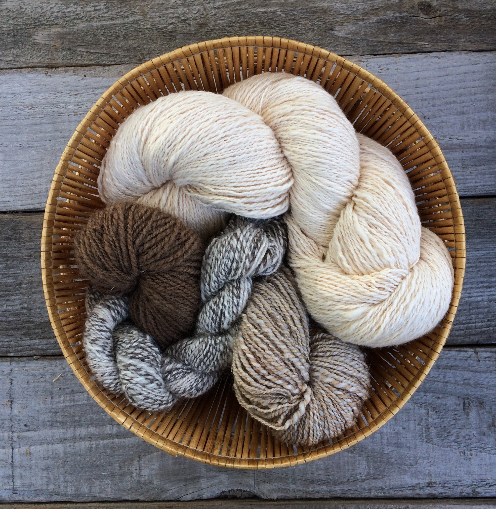 Spinning Circle - Sunday, August 10th + More Dates!