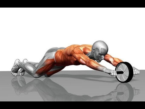 Ab Roller For A Strong Core
