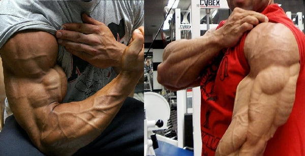 5 Tips To Growing Big Arms