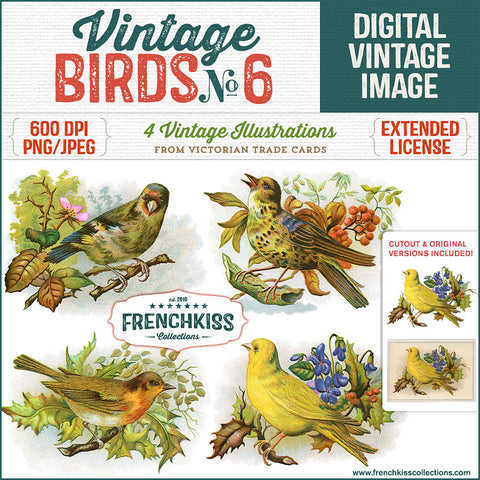 Set of 4 Victorian Trade Cards of birds on branches. Each bird includes 3 versions: the trade card, the illustration, and a cutout graphic.
