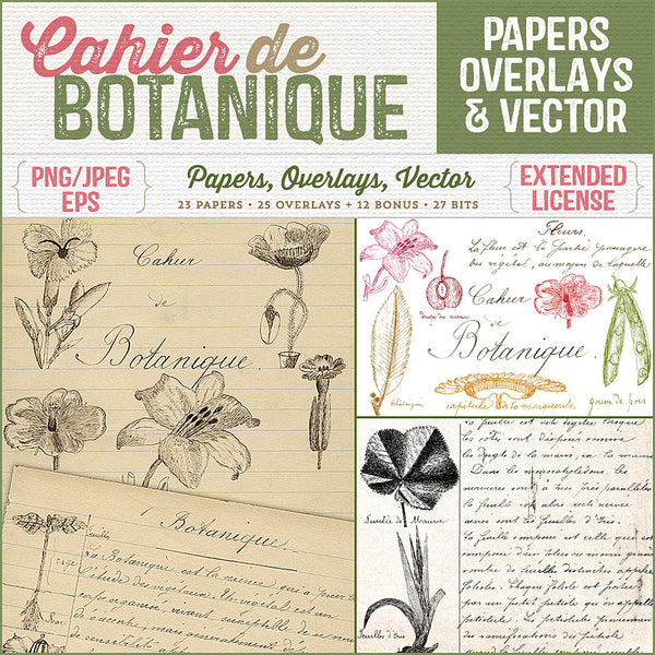 Vintage French papers, overlays and vector illustrations and script from a charming vintage French school boy's notebook on botany.