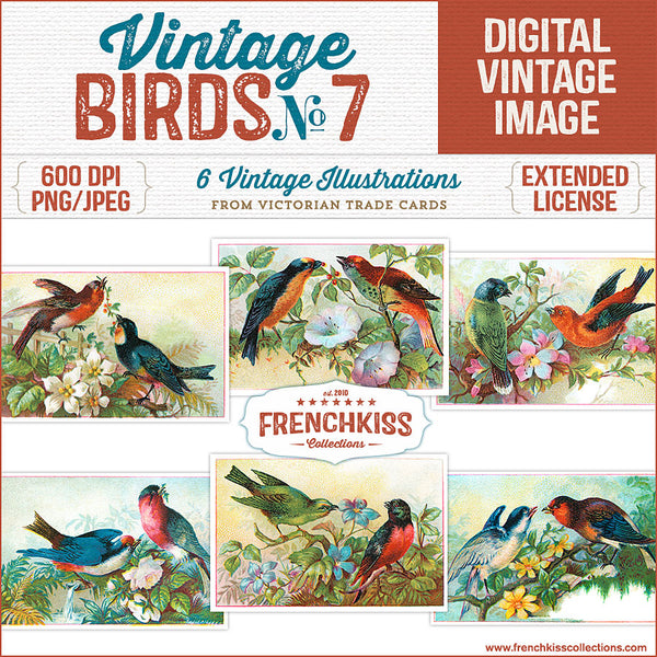 Set of 6 digital Victorian Trade Card illustrations of birds on flowery branches.