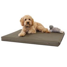 Load image into Gallery viewer, Memory Foam Dog Bed