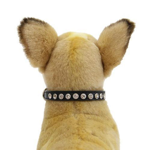 Clear Crystal Puppy Black Dog Collar