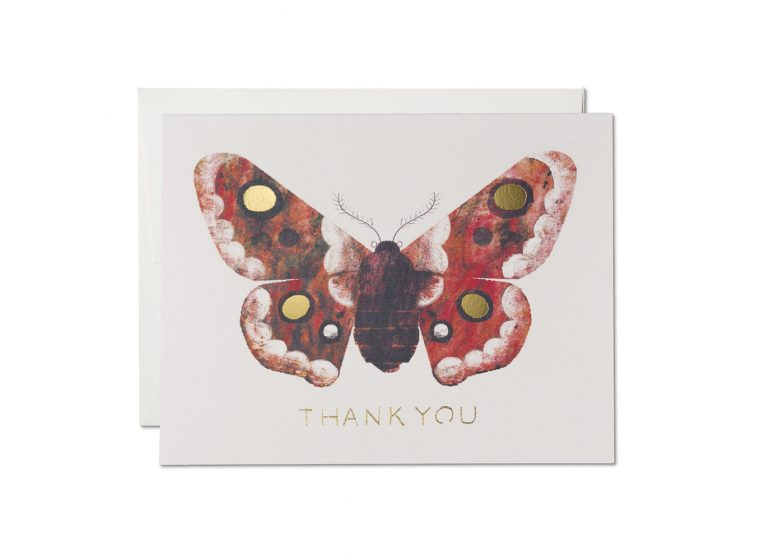 Red Cap Cards Moth Foil Thank You Card