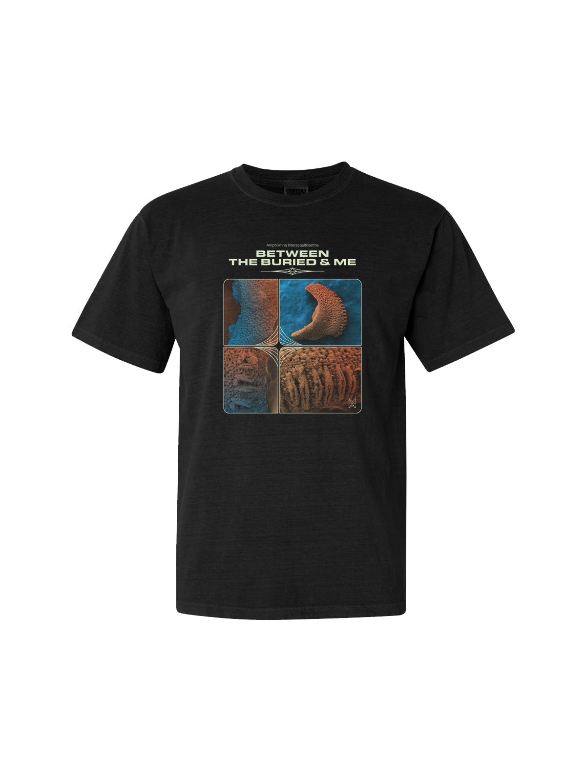 Between the Buried and Me - Amphilimna Intersepultosetme Shirt - Merch Limited