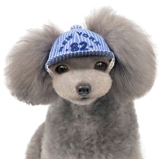 Alfie Pet by Petoga Couture - Riley Baseball Hat for Small Dogs & Cats Blue