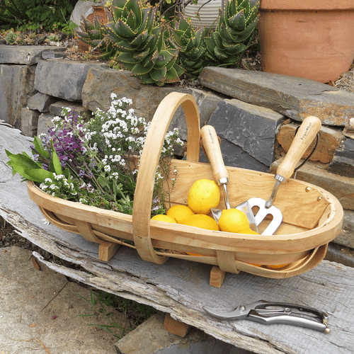 Traditional Harvesting Trug - Large |  | Plant Gifts | The Potted Garden