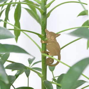 Plant Animals – Bush Baby