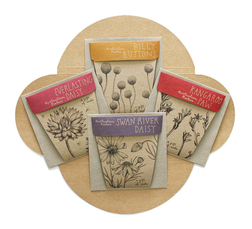 Australian Native Gift Cards Set of 4 | Seeds | Plant Gifts | The Potted Garden