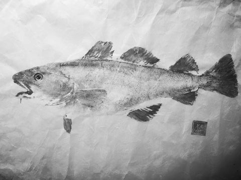 Unframed atlantic cod gyotaku