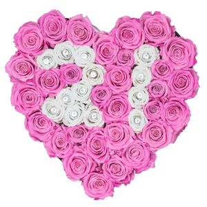 "Rose Number ""21"" Pink and White Preserved Roses 