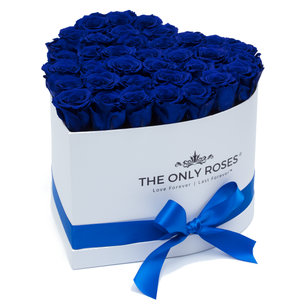 Royal Blue Preserved Roses | Heart White Huggy Rose Box - The Only Roses