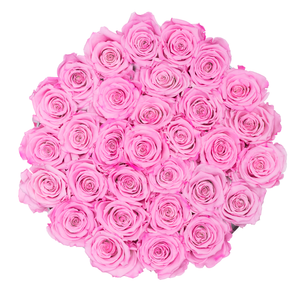 Pink Preserved Roses | Medium Round White Huggy Rose Box - The Only Roses