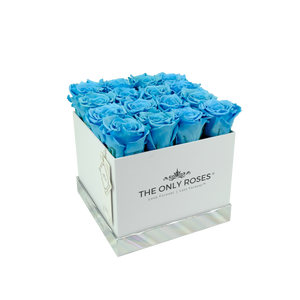 Blue Preserved Roses | Square White Huggy Rose Box - The Only Roses