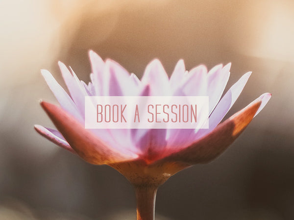 Rose Rendon Book a Session