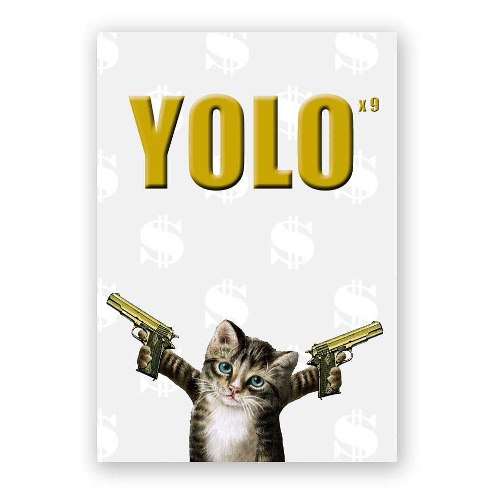 Yolo x 9 Cat Hardcover Notebook