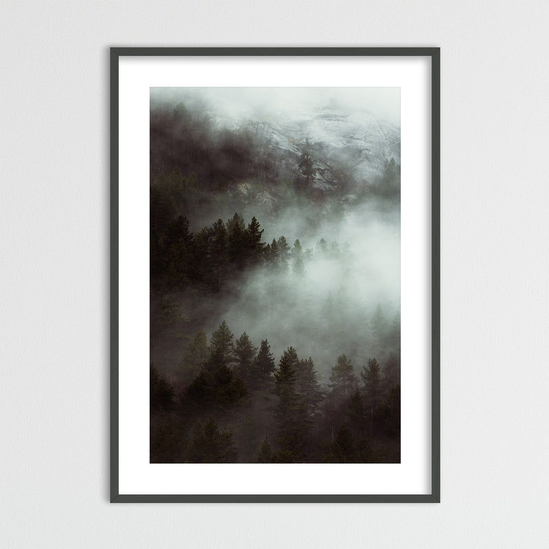 Dramatic Autumn Weather over Forest | Framed Photo Print by Jan Erik Waider