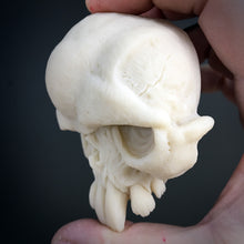 Load image into Gallery viewer, Rotten Tail Skull - Unpainted
