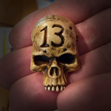 Load image into Gallery viewer, Skull Magnet - Bone - 13