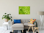 Nature Photography - Fern Leaf Curl, Green - Fine Art Canvas - Home Decor Unframed Wall Art Prints