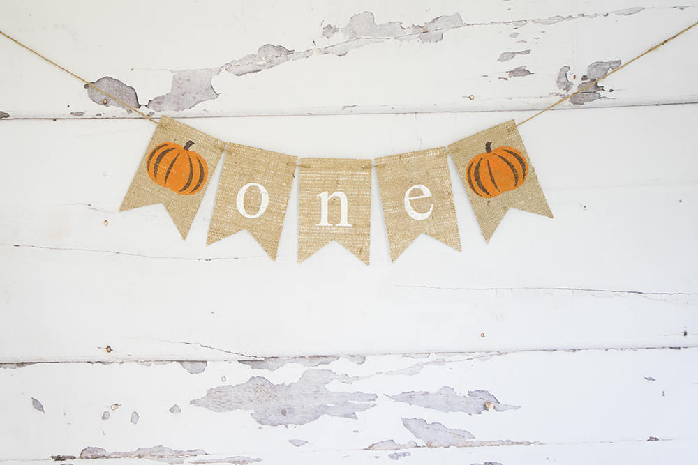 Fall 1st Birthday Party Decor, Pumpkin 1st Birthday, One Banner, Fall Highchair Party Prop, Little Pumpkin Sign, B896
