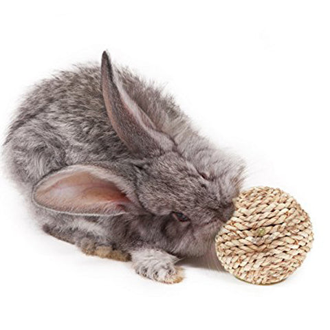 Fiber Ball for Rabbit - Improves Dental Health