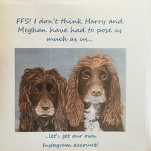 "Load image into Gallery viewer, Greeting Card Spaniels - ""FFS! I don't think Harry and Meghan have had to pose as much as us!"""