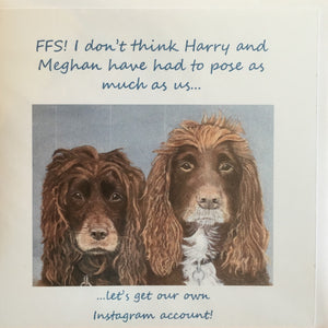 "Greeting Card Spaniels - ""FFS! I don't think Harry and Meghan have had to pose as much as us!"""