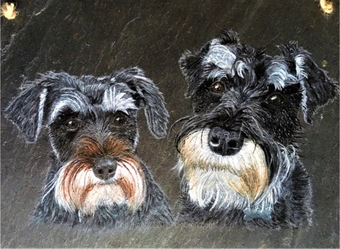 Pet portrait in acrylic, hand-painted original from your photos.  Schnauzer dog painting.