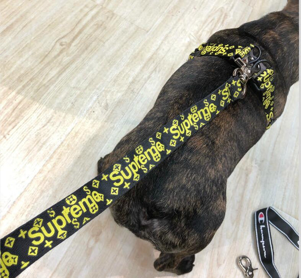 Supreme Royal Green Alien Leash, Collar & Harness Set