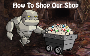 How To Shop Our Website Store