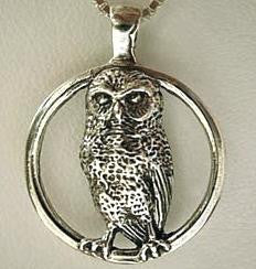 Burrowing Owl Circle Pendant handmade in Sterling or 14k Gold by Tosa Fine Jewelry