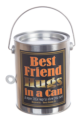 Hugs in a Can Best Friend Hugs, unique gift hug, best teddybear hug, hug can, send hugs, best gift hug, paint can teddybear hug