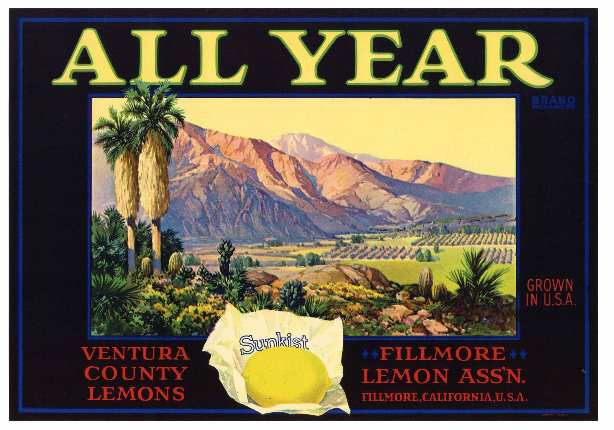 All Year Brand Vintage Fillmore Lemon Crate Label