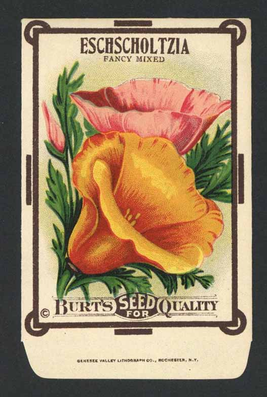 Eschscholtzia Antique Burt's Seed Packet