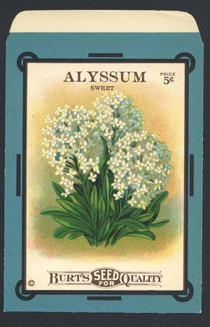 Alyssum Antique Burt's Seed Packet, L