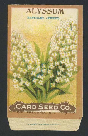 Alyssum Antique Card Seed Co. Packet