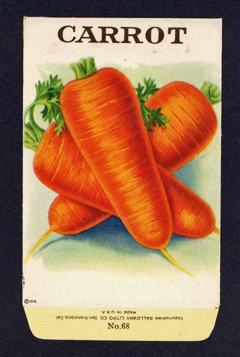 Carrot Antique Stock Seed Packet
