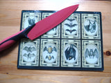 Bat glass cutting board-small - SocialPariah
