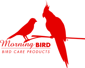 Morning Bird, Inc.