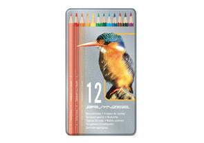 Image of the product Bruynzeel Bird Colored Pencils