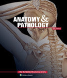 Anatomy and Pathology 6th Ed