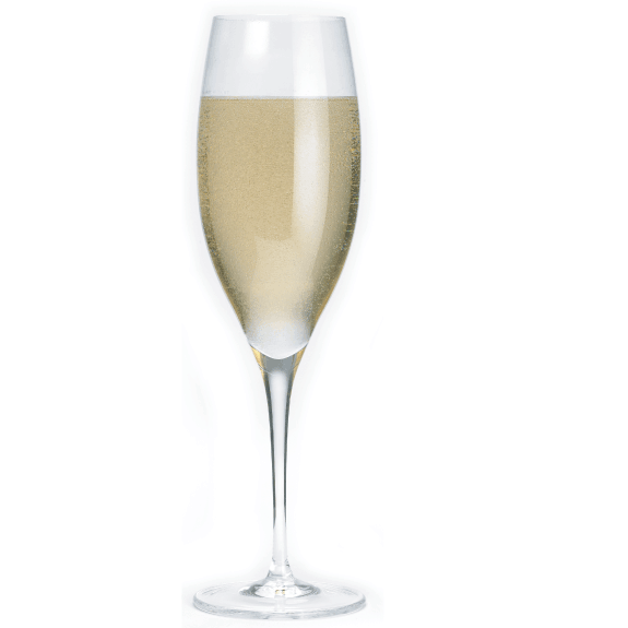 Riedel Sommelier Vintage Champagne Glass