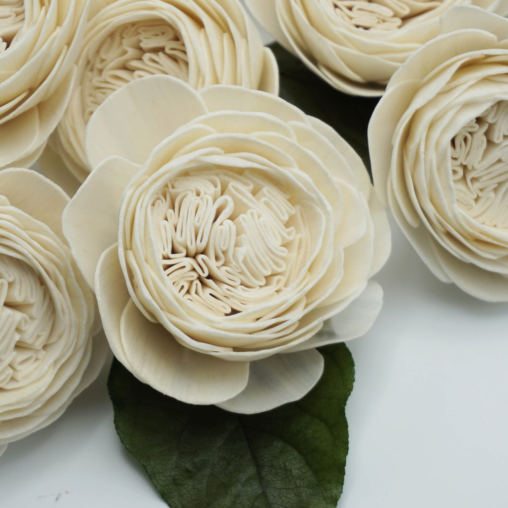 Cabbage Rose  - set of 12- multiple sizes available -