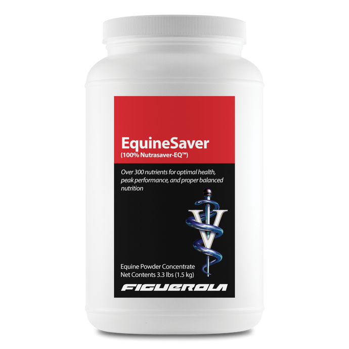 EquineSaver Horses