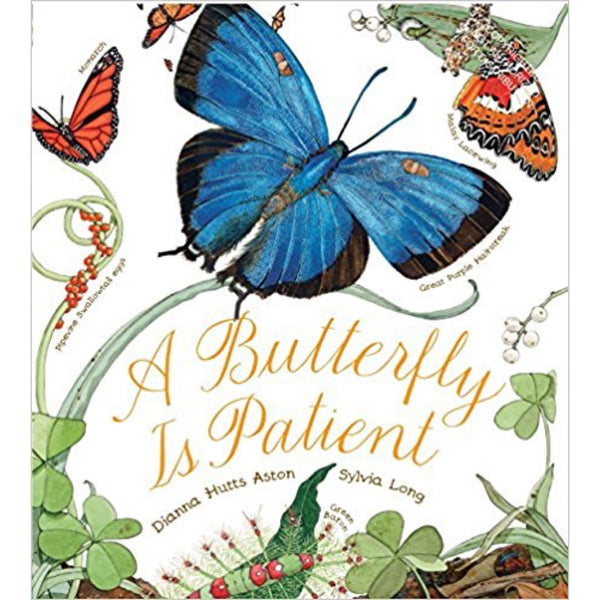 A Butterfly Is Patient (Ages:5-6)