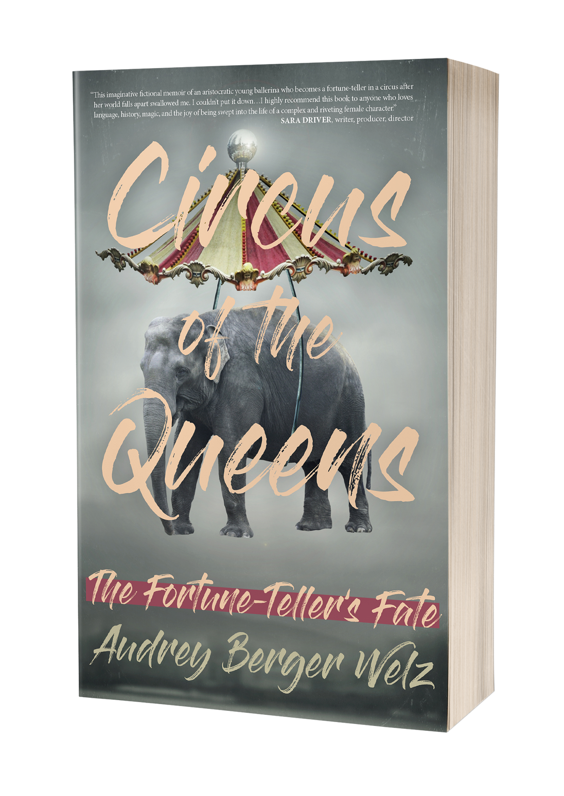 Circus of the Queens: The Fortune Teller's Fate