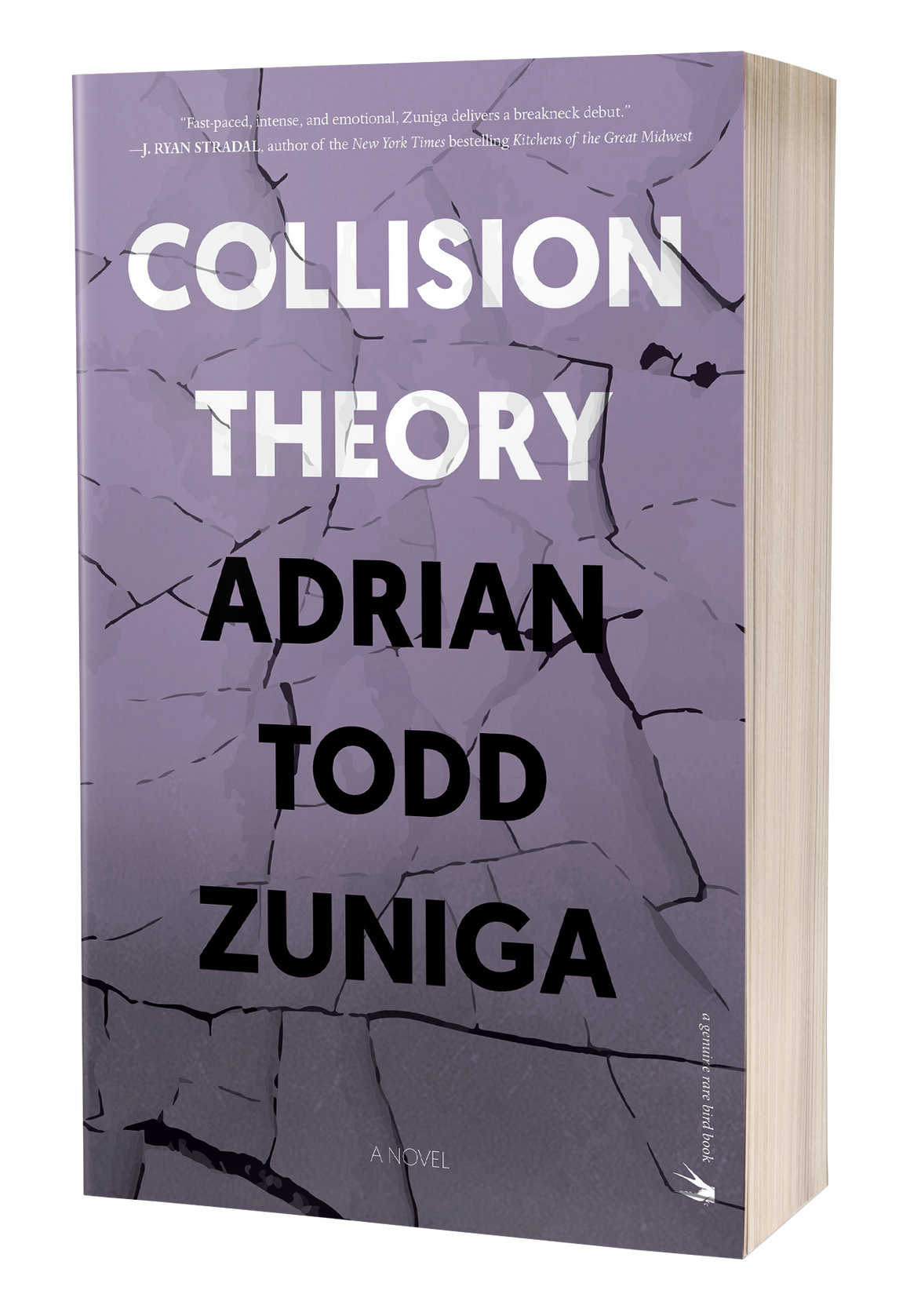 Collision Theory [Signed]